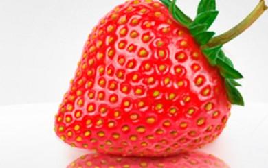 Dreierlei Erdbeere mit Tiramisu